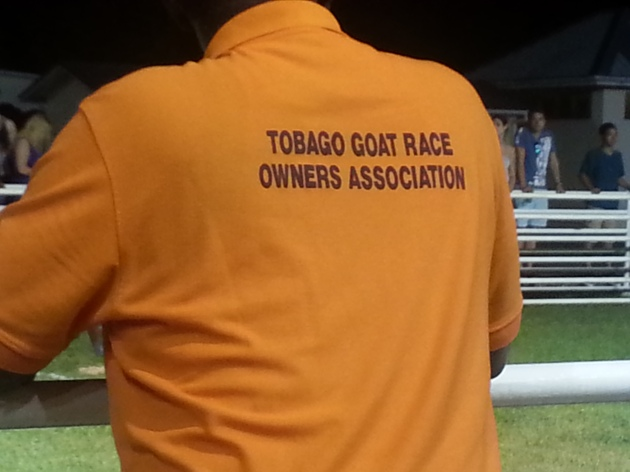 Goat races are serious business in Tobago
