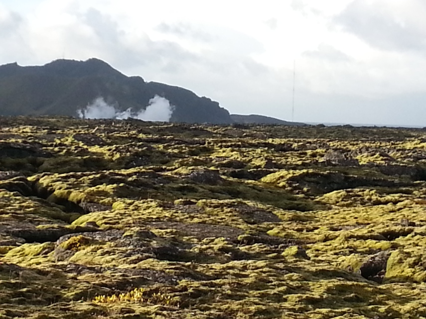 congealed lava flows covered in green moss